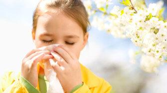 αλλεργίες τι είναι
